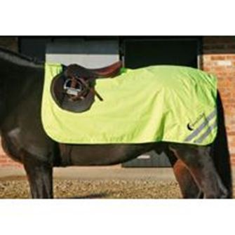 Luna Rider Lightweight Fluorescent Excercise Sheet