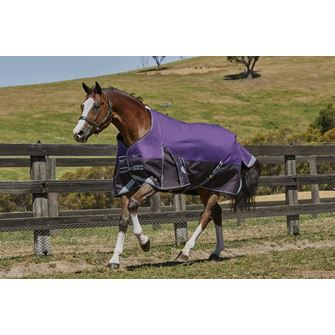 Weatherbeeta ComFitec Plus Dynamic Standard Neck Medium Lite Turnout Rug