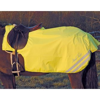 Mark Todd Fleece Lined Reflective Exercise Sheet