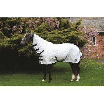 Masta Fixed Neck Pony Summer Sheet
