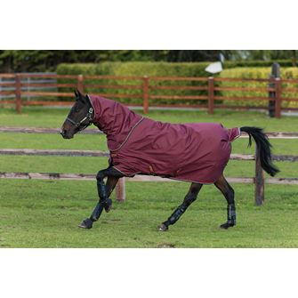 Horseware Amigo Hero ACY Plus Lite 100g Turnout Rug with Disc Front Closure