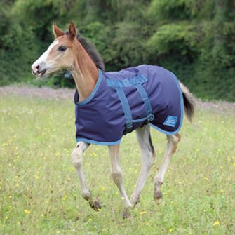 Shires Tempest Foal Turnout Rug