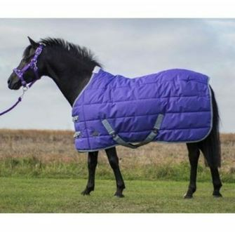 Mark Todd Pony Mediumweight Stable Rug Standard Neck