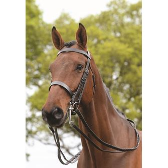 Kincade Double/Show Weymouth Bridle with Reins