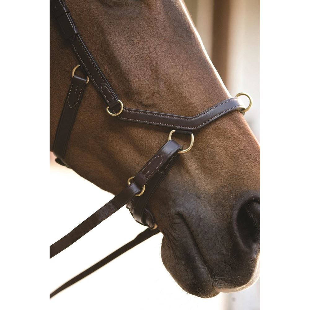 Rambo Micklem MultiBridle (bitted, bitless and lunge cavesson) No Reins NEW