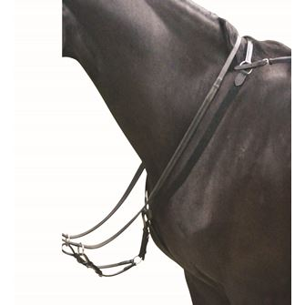 Kincade Elastic Eventing Breastplate and Martingale