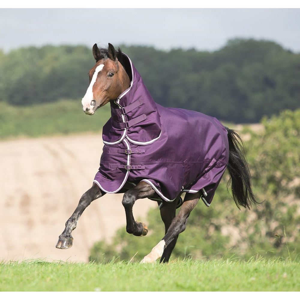 Shires Tempest Plus 200 Combo Turnout Rug