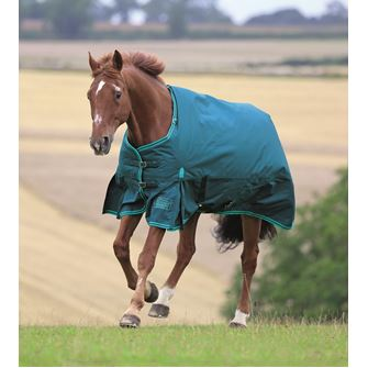 Shires Highlander Original 300 Turnout Rug
