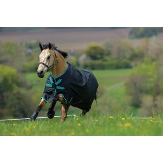 Horseware Amigo Hero ACY Lite 0g Turnout Rug with Disc Front Closure *Special Offer*