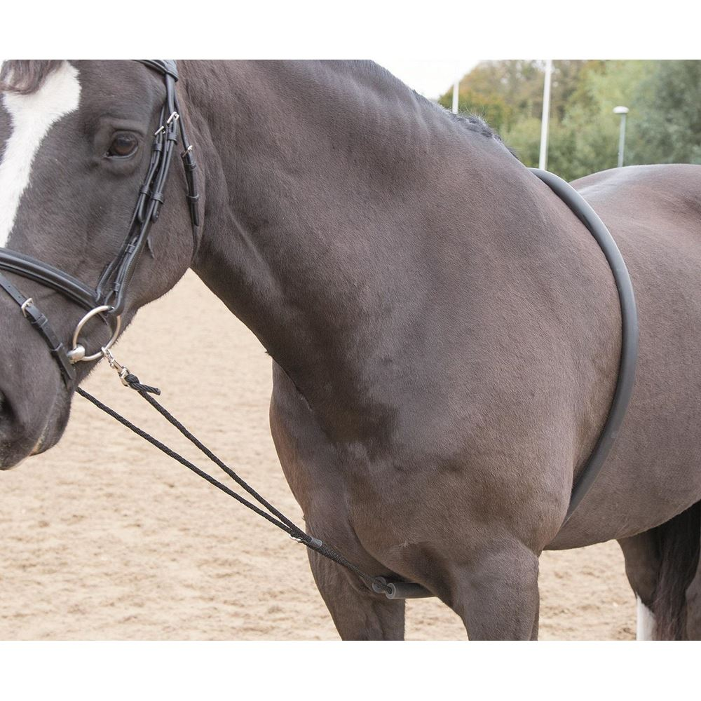 Shires Soft Lunge Aid