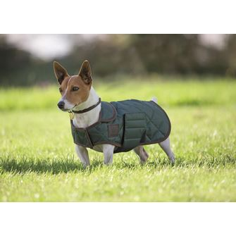 Shires Digby & Fox Quilted Dog Coat XXXS-S