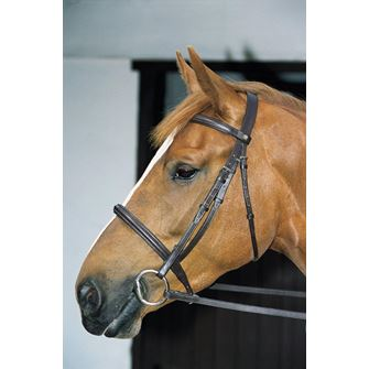 JHL Pro Cavesson Bridle with Reins