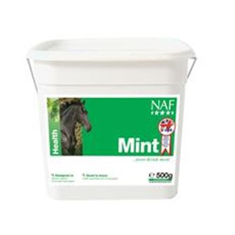 NAF Mint 500 gm