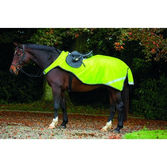 Horseware Amigo Reflective Competition (Exercise) Sheet