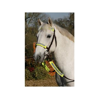 Luna Rider Reflective Bridle Kit