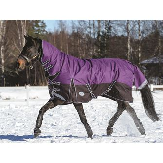 Weatherbeeta ComFitec Plus Dynamic Combo Heavy Turnout Rug