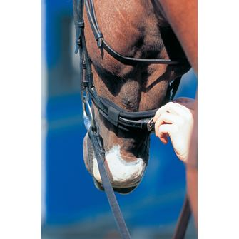 Prolite Bridle/ Noseband/ Curb Chain Relief Pad