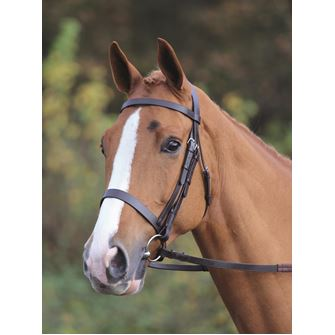 Shires Aviemore Plain Cavesson Bridle