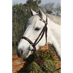 Plain Cavesson Bridle with Reins