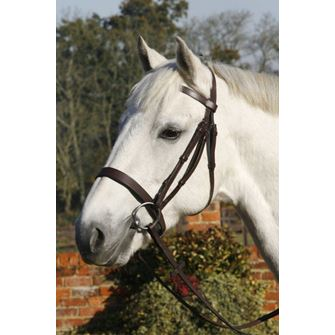 JHL Plain Cavesson Bridle with Reins