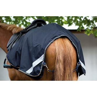 Horseware Amigo 3 in 1 Competition Sheet