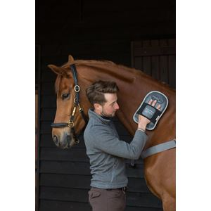 Equilibrium Therapy Horse Massage Mitt