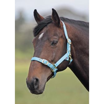 Shires Nylon Fully Adjustable Headcollar