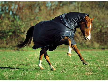 Horseware Amigo 600d Plus Medium Turnout Rug