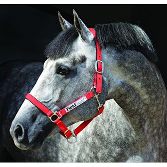 Horseware Ireland Field Safe Headcollar