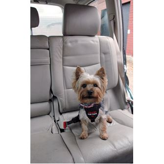 Clix CarSafe Dog Harness - XSmall