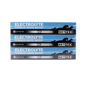 Nettex Electrolyte Syringe Paste Boost (30ml 3 pack)
