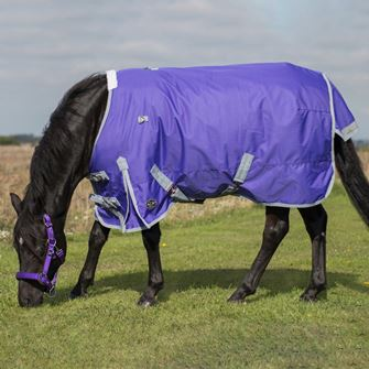 Mark Todd Mediumweight Pony Turnout Rug Standard Neck