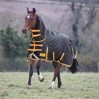 Shires Winter StormBreaker Combo 300g