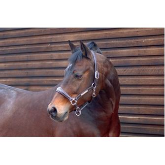 Caldene Leather Diamonte Headcollar
