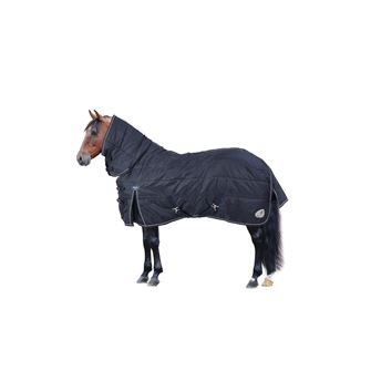 Climatemasta 100g Fixed Neck Stable Rug
