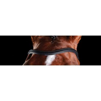 Collegiate Comfitec Training Replacement Browband