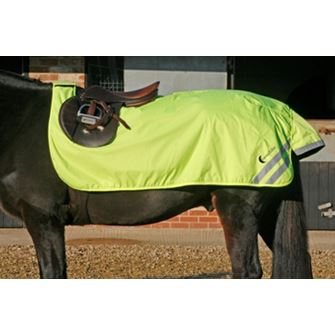 Luna Rider Fleece Lined Fluorescent Excercise Sheet