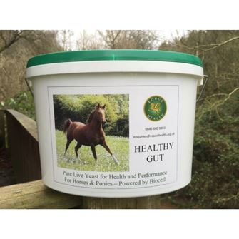 Equus Health Healthy Gut 1kg