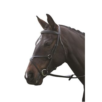 Kincade Grackle Bridle with Reins