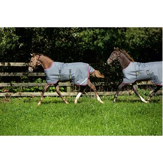 Horseware Amigo Adjustable Foal Turnout Rug