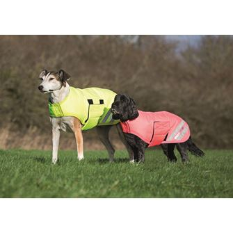 Shires EQUI-FLECTOR® Waterproof Dog Coat M-XXL