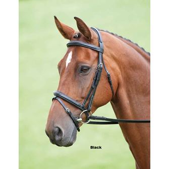 Shires Salisbury Bodenham Flash Bridle