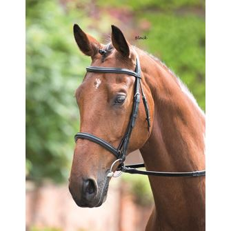 Shires Rossano Raised Cavesson Bridle with Reins