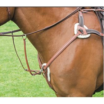 Shires Avignon 5 Point Breastplate