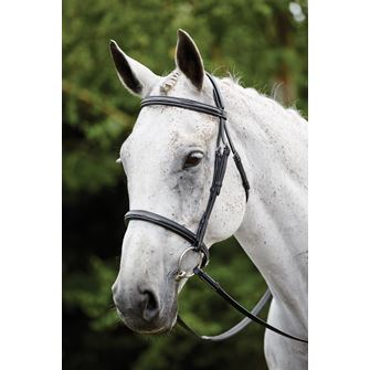Kincade Raised Padded Fancy Stitch Cavesson Bridle