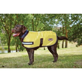 Weatherbeeta Reflective Dog Rug (Dog Coat)