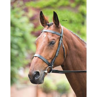 Shires Rossano Hunter Cavesson Bridle with Reins