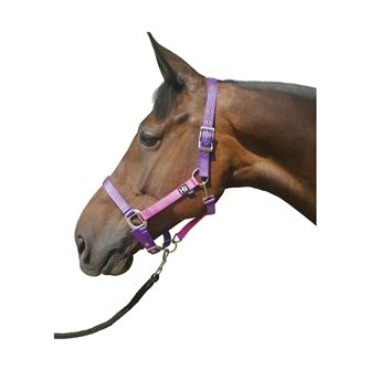 Hy Metallic Look Head Collar