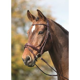 Shires Adelfia Rolled Leather Flash Bridle