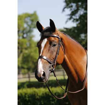 Mark Todd Hunter Bridle with Reins
